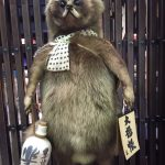 Staffing Japanese Raccoon
